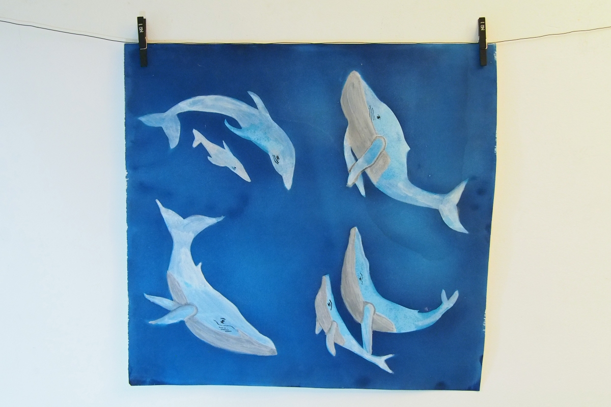 Cyanotype with watercolour paint